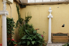 Casa-delle-farfalle-Montegrotto-Padova